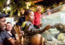 Greater Cleveland Aquarium que ofrece dos por $ 20 de admisión por tiempo limitado