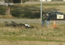Informe: Piloto muere después de que un pequeño avión se estrella en California