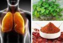 Cómo hacer una depuración de pulmones y bronquios