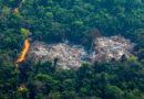 """El Gobierno brasileño dice que reducirá """"a un mínimo aceptable"""" la deforestación y los incendios en la Amazonía"""