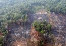 Las conclusiones de la primera Asamblea Mundial de la Amazonia