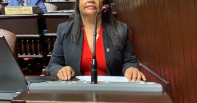 """Diputada Servia Iris Familia sugiere al presidente Abinader usar su sueldo para """"Casa del Dominicano en el Exterior"""""""