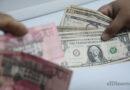 ¿Cuán conveniente es para la economía un dólar débil?
