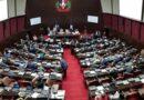 Cámara de Diputados no pospondrá sesión del lunes a pesar del paso de Grace
