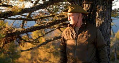 «El oso ve que es Putin»: el presidente de Rusia disfruta de sus vacaciones en la taiga siberiana