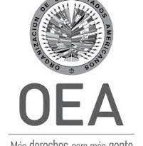 """Parte de los miembros de la OEA reafirman su """"preocupación"""" por el posible reemplazo del organismo"""