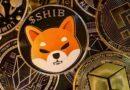 Shiba inu coin, alcanza su máximo histórico