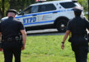 Un hombre se sube a la cima de un árbol en Nueva York y se niega a bajar huyendo de la Policía